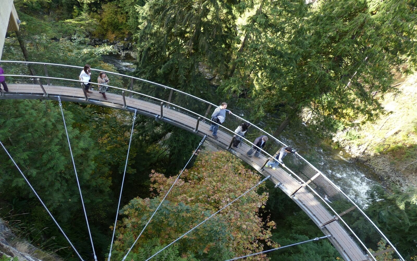 An above view of the Capilano skywalk