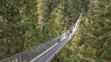 tourists crossing the capilano suspension bridge in vancouver bc canada