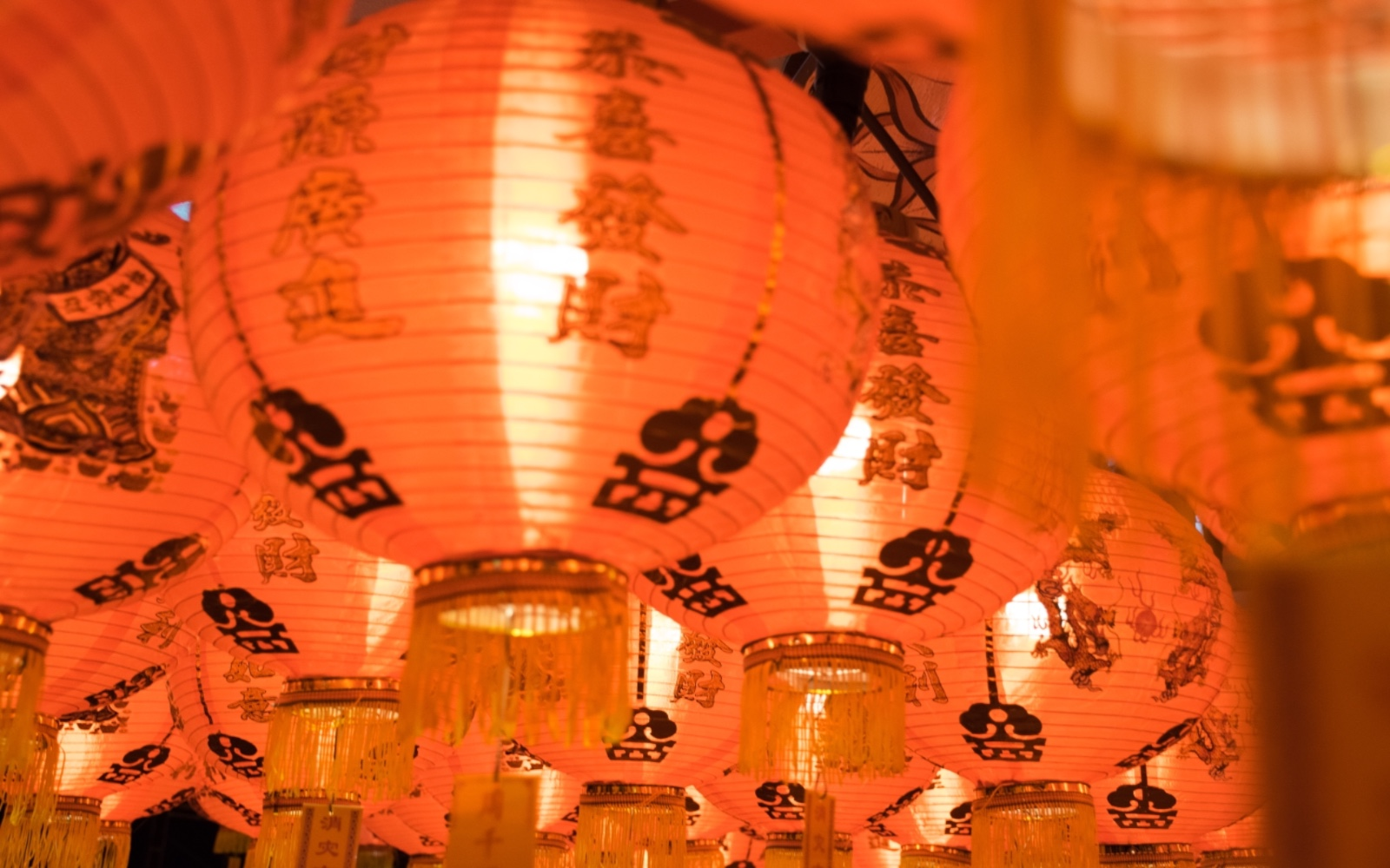 Chinese lanterns at Bamboo Village