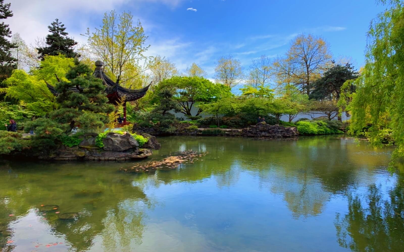A pond at Dr. Sun Yat-Sen Park