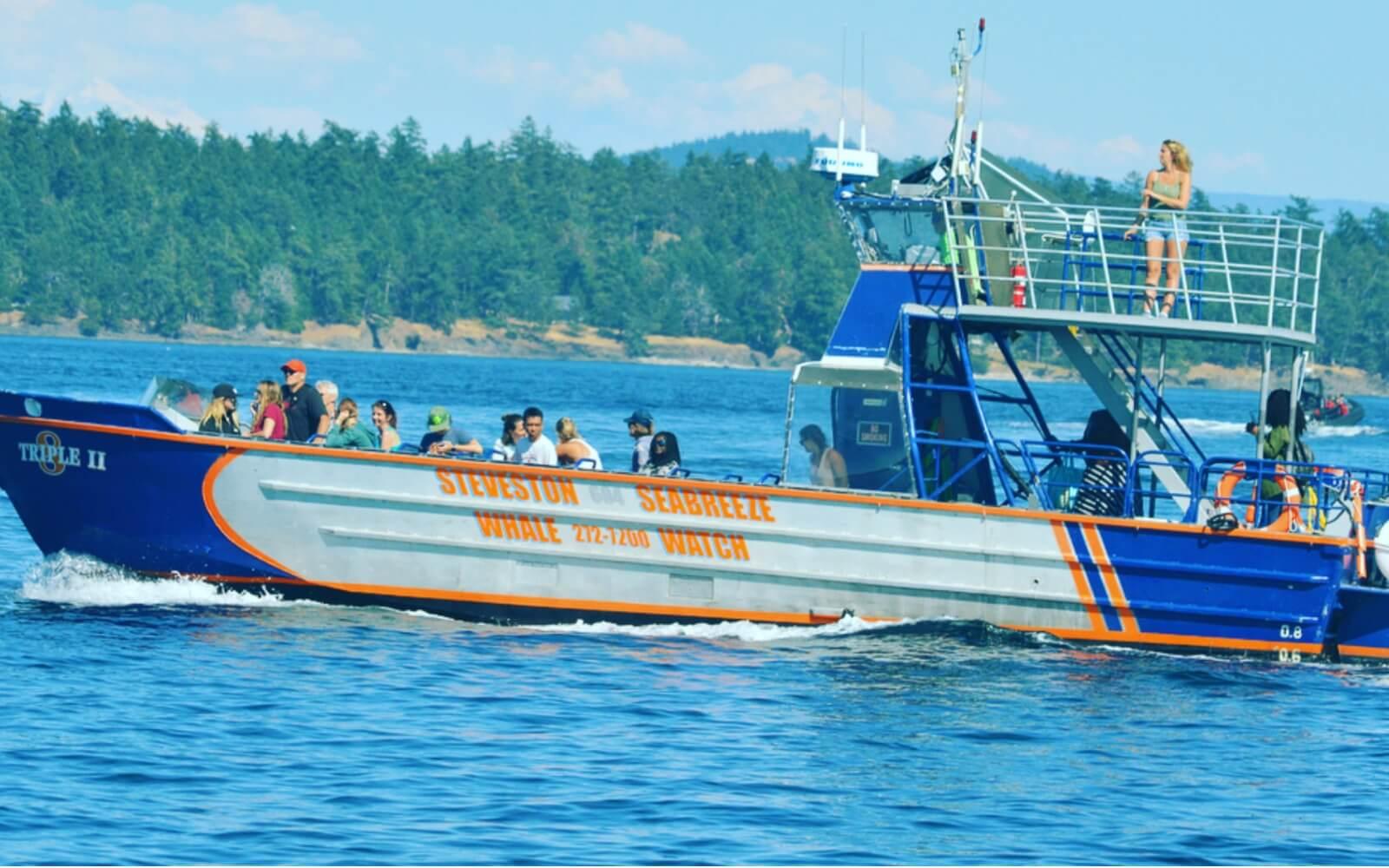 Passengers aboard a whale watching vessel