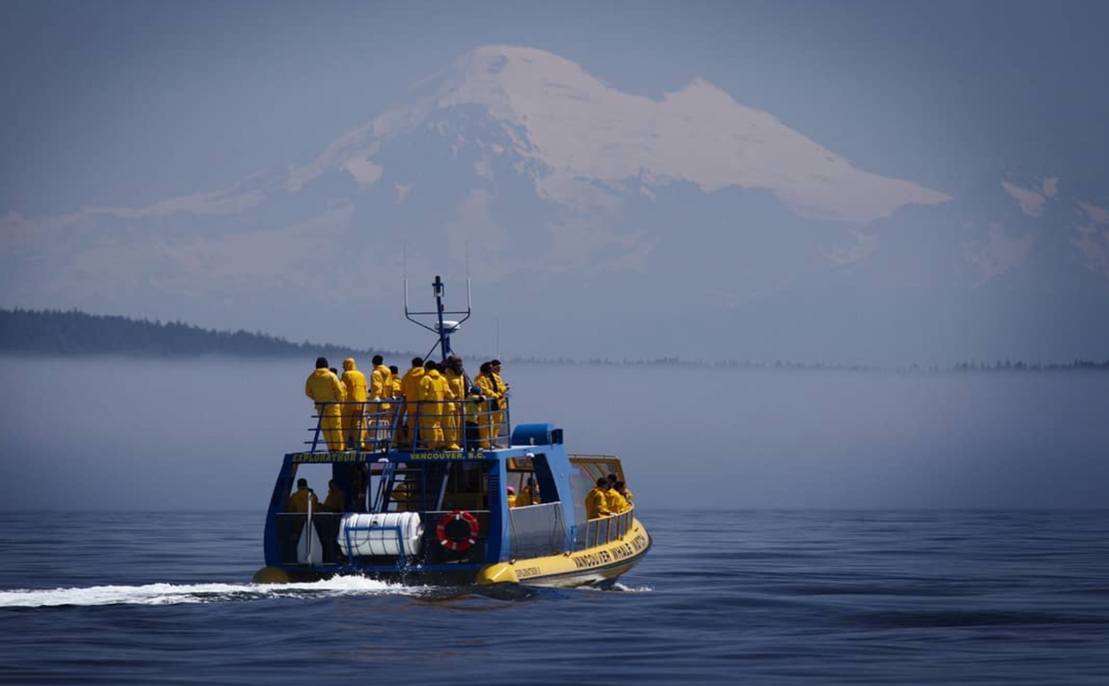 A Vancouver Whale Watch boat passes in front of Mt. Baker