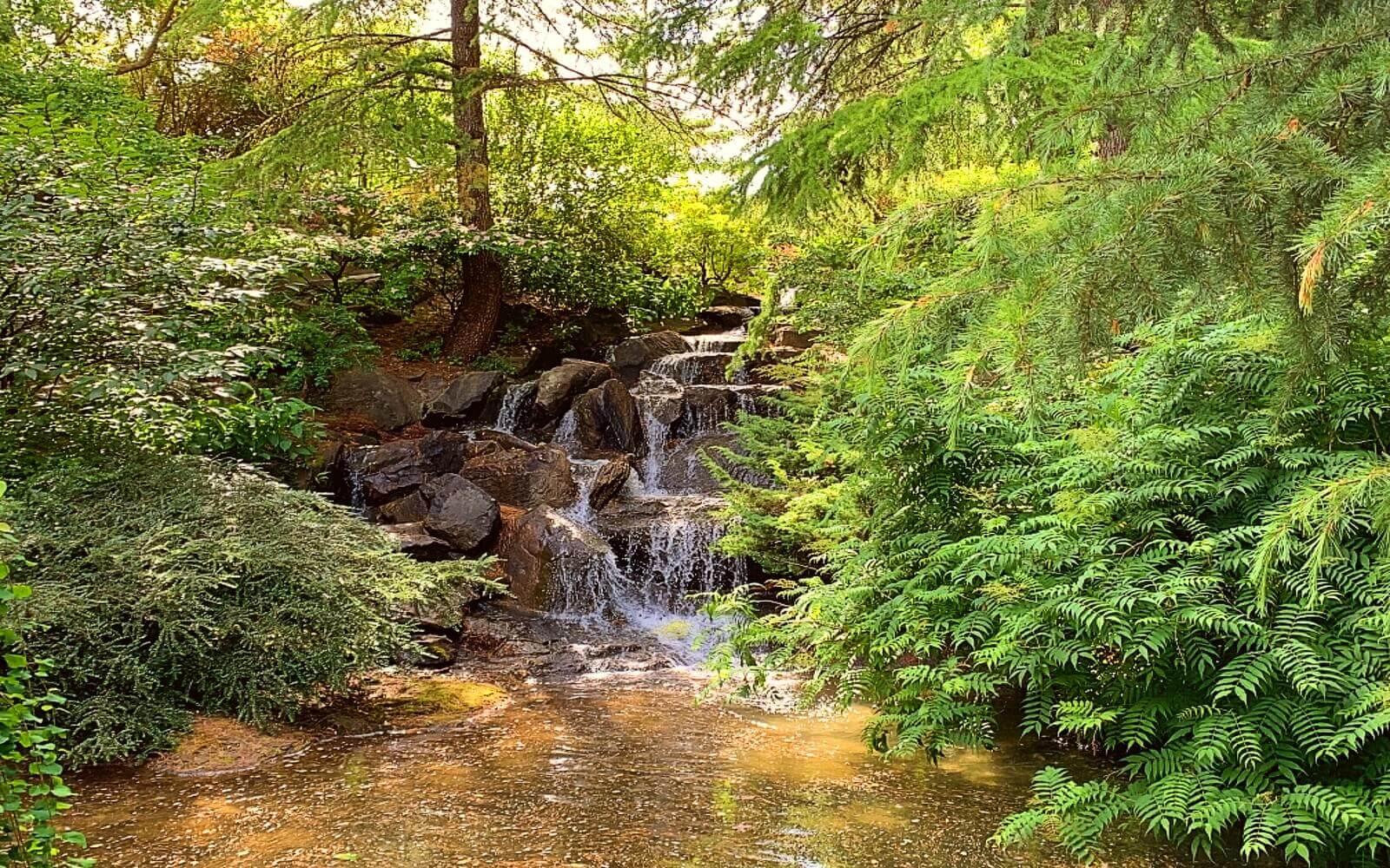 A waterfall at VanDusen Garden