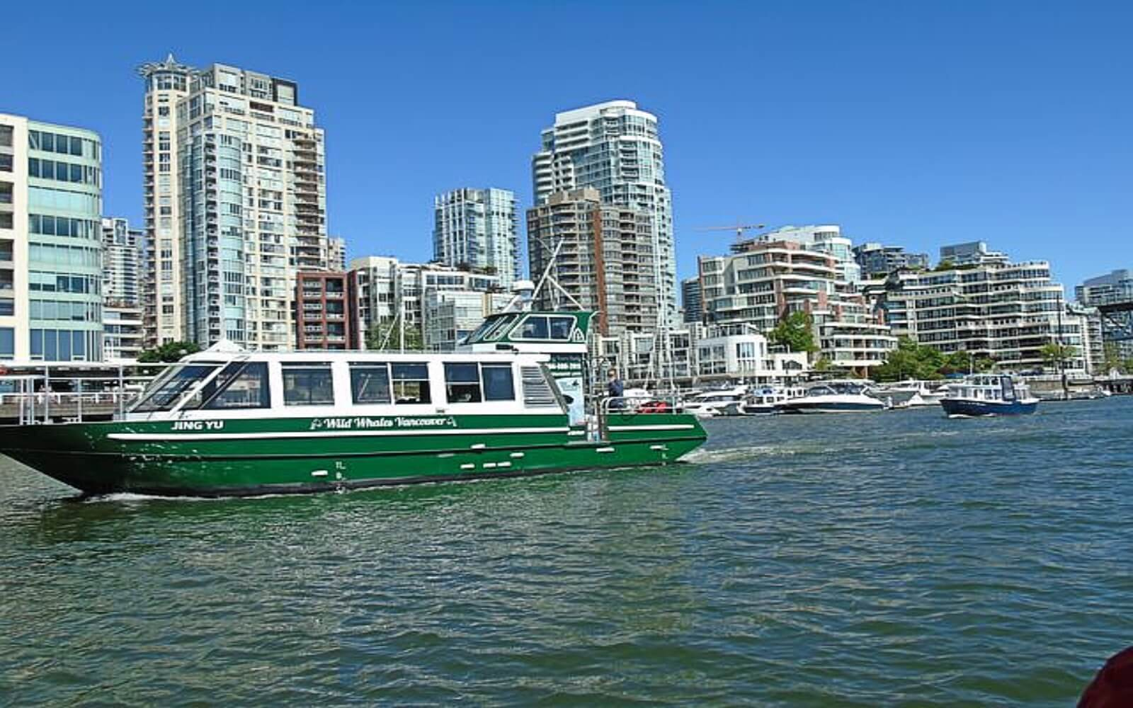 A Wild Whales whale watching vessel in False Creek