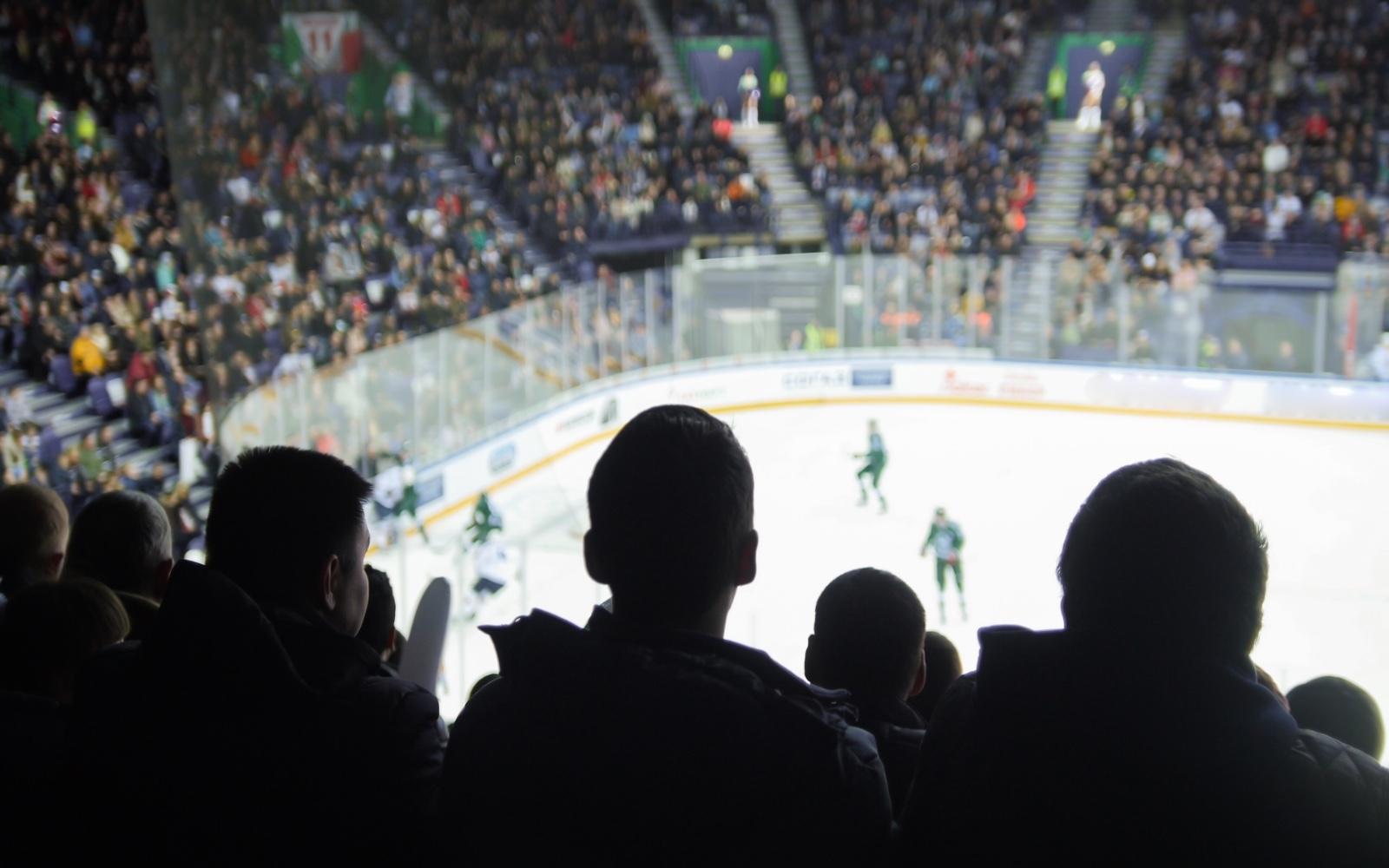 A group of fans watch a hockey game at the stadium