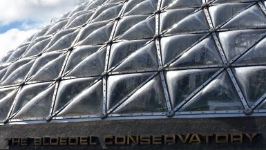 The exterior of the Boedel Conservatory