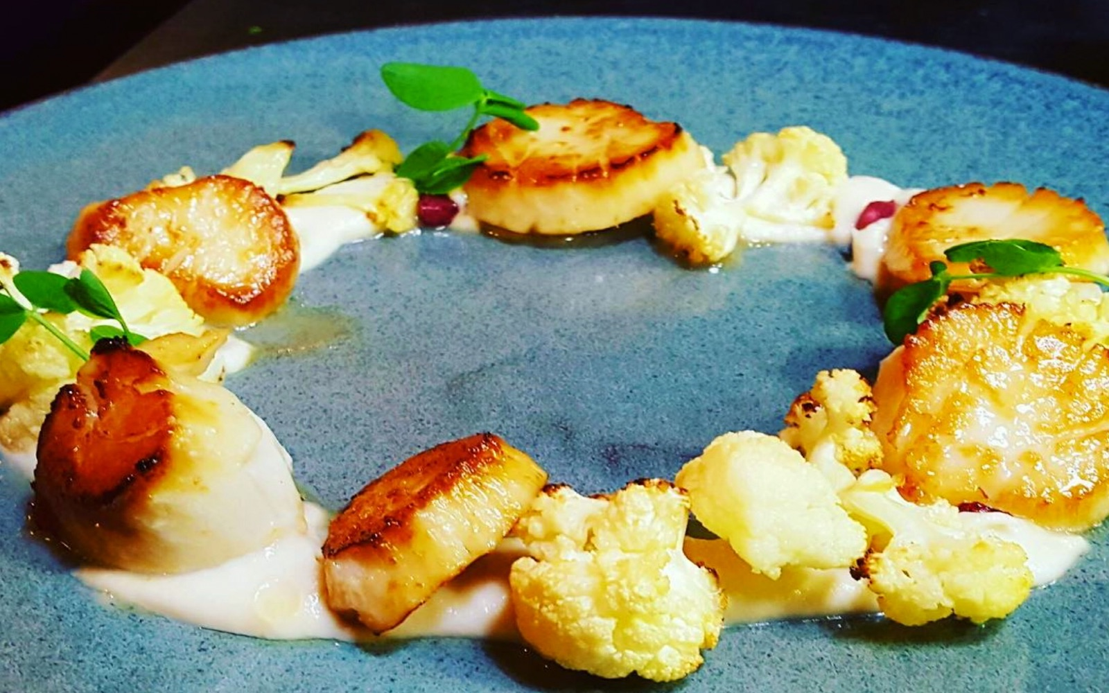 Seared scallops with cauliflower at Absinthe Bistro, Commercial Drive