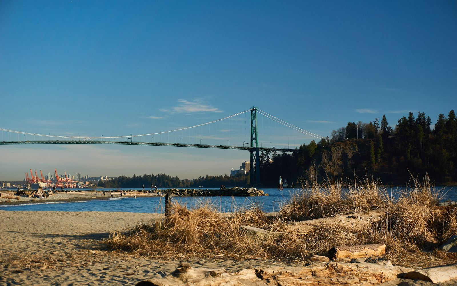 The view of the Lions Gate Bridge from Ambelside Beach, North Vancouver