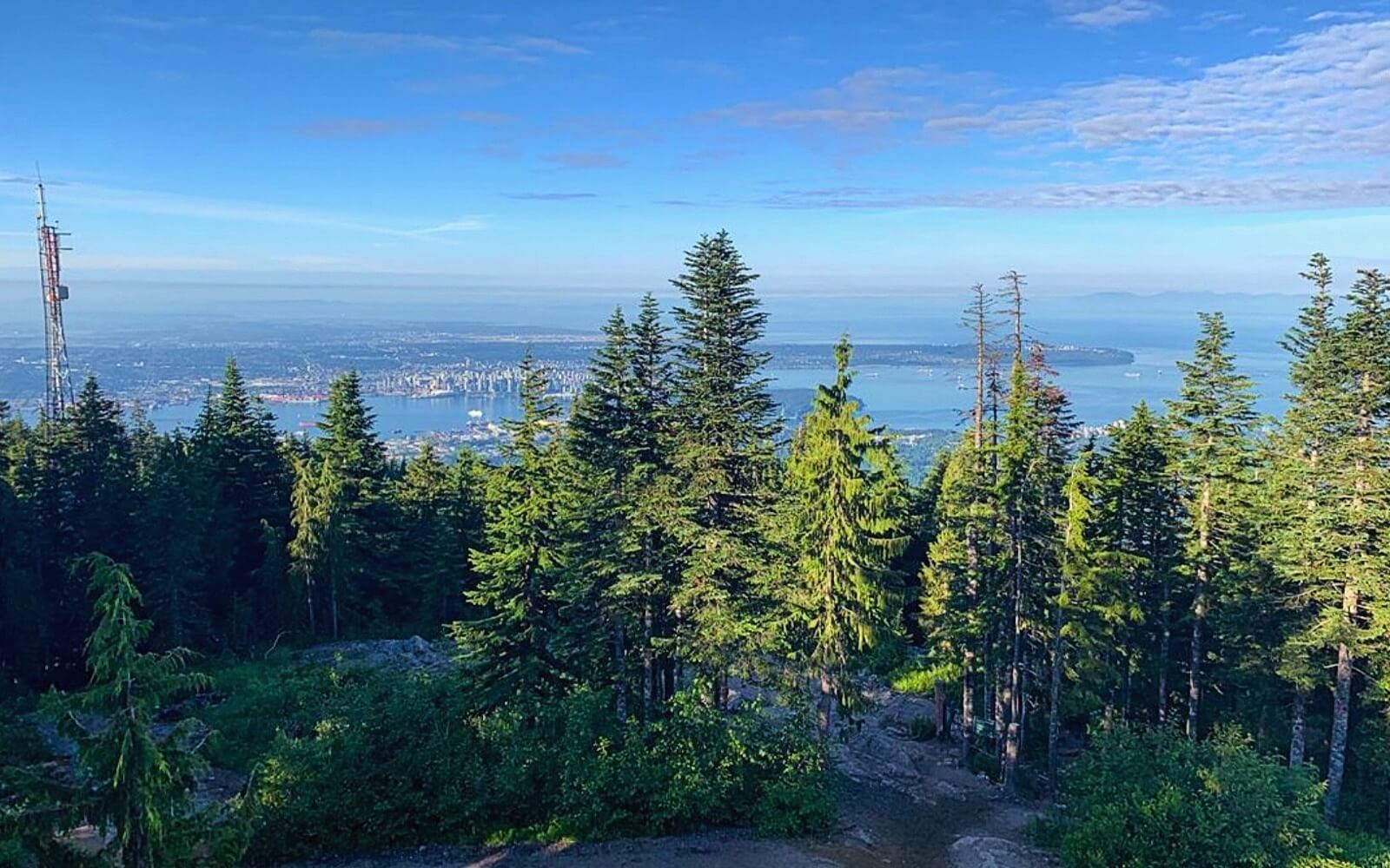 The view of Vancouver from Grouse Mountain