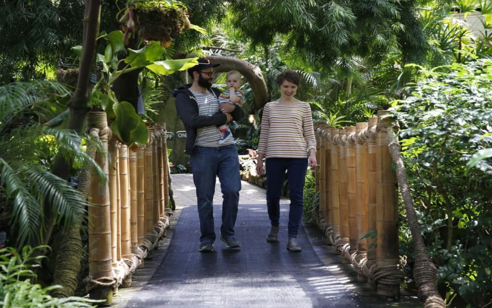 A family visits the Bloedel Conservatory, Vancouver