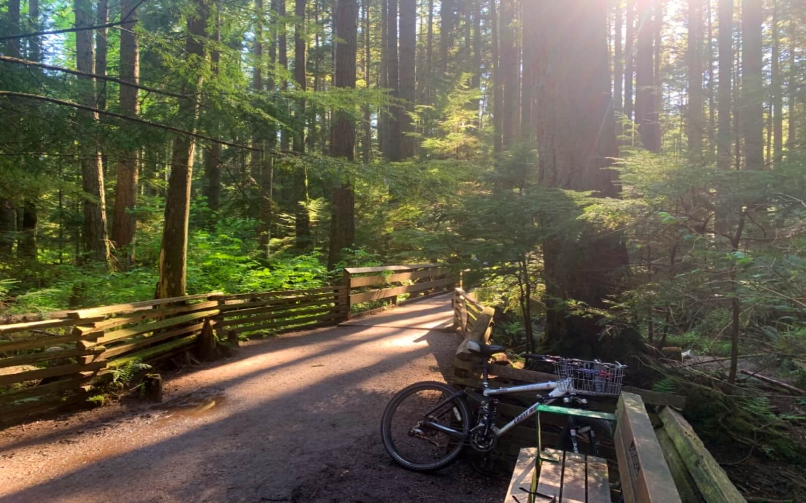 Council Trail, Pacific Spirit Regional Park
